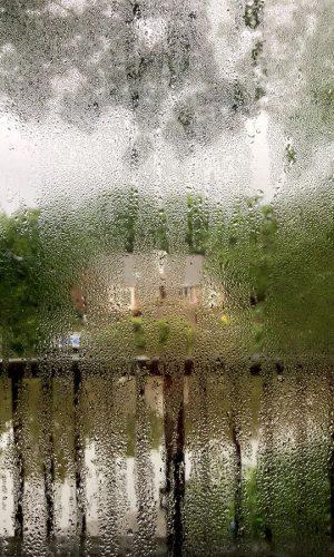 humidité suroccupation logement