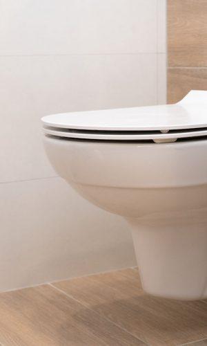 humidité toilettes